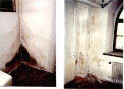 Vnitřní prostředí v budovách - vliv stavu konstrukcí a údržby budov na jeho kvalitu